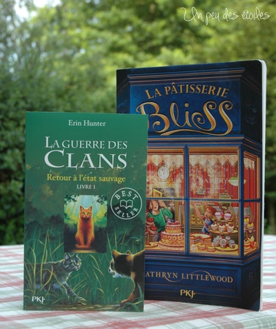 livres-clemence